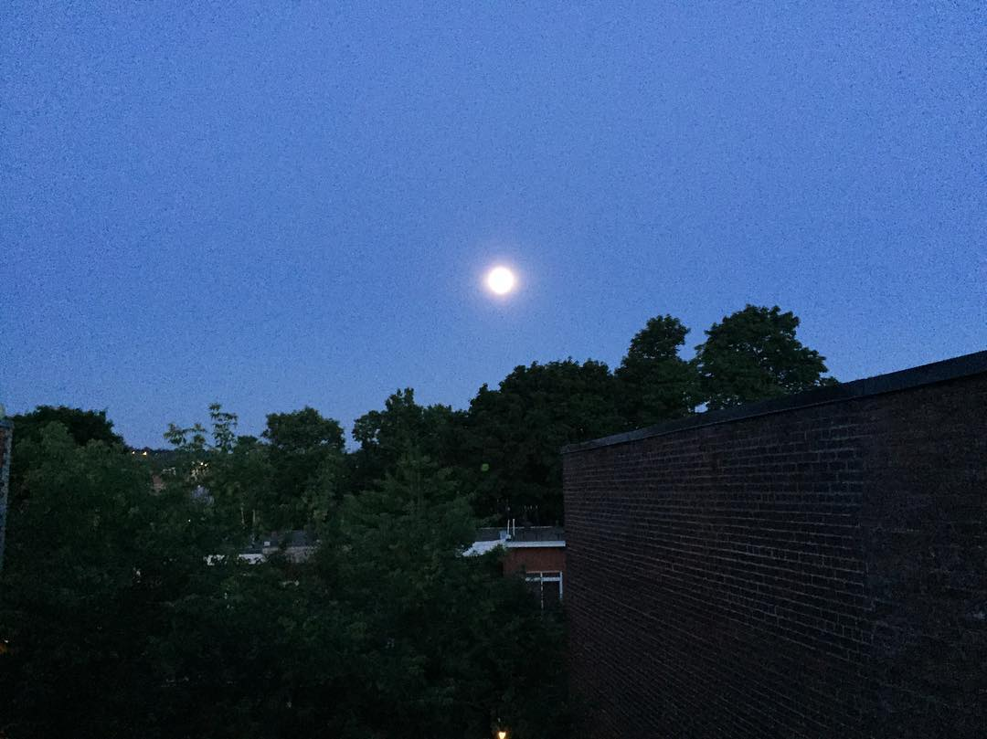 An image of the view of the full moon in the early morning of the summer solstice from the top of a building. There are some dark trees and silhouettes of buildings, but mostly the picture is of a striking dark blue sky and a bright silver moon in the sky.