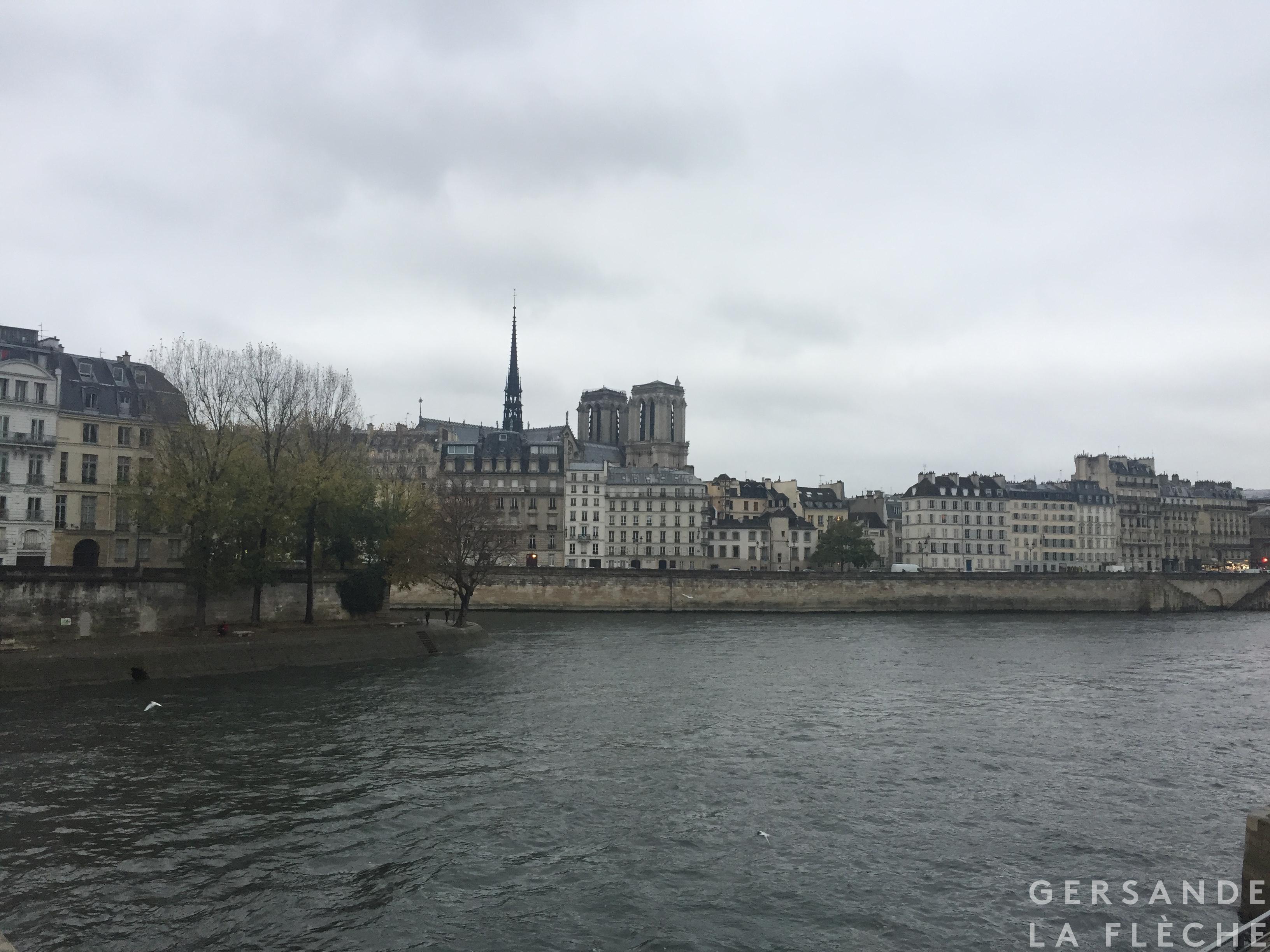 The view of Notre Dame de Paris across the river from Île Saint-Louis and Île de la Cité.