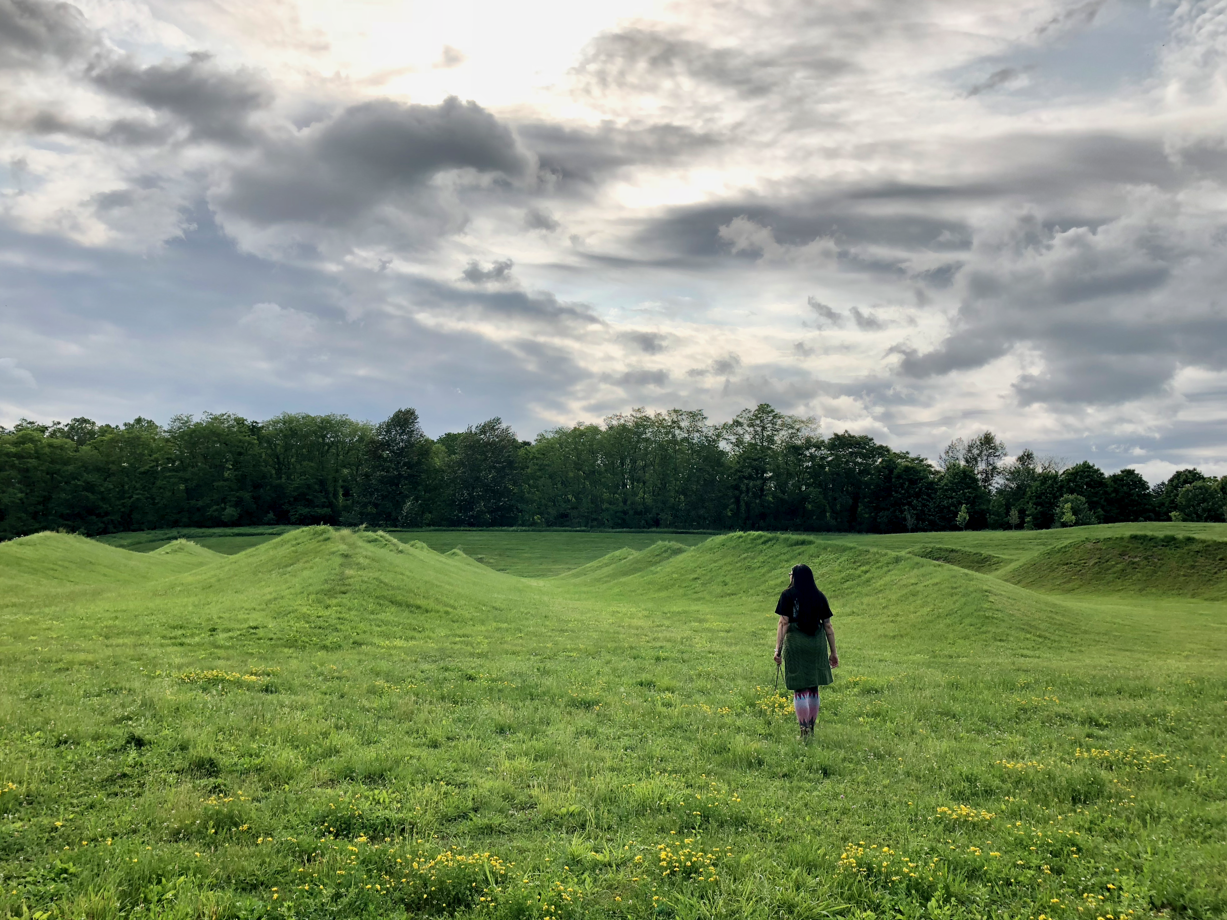 My favourite sculpture, embedded in the landscape itself, a sculpture of wavy hills by Maya Lin.