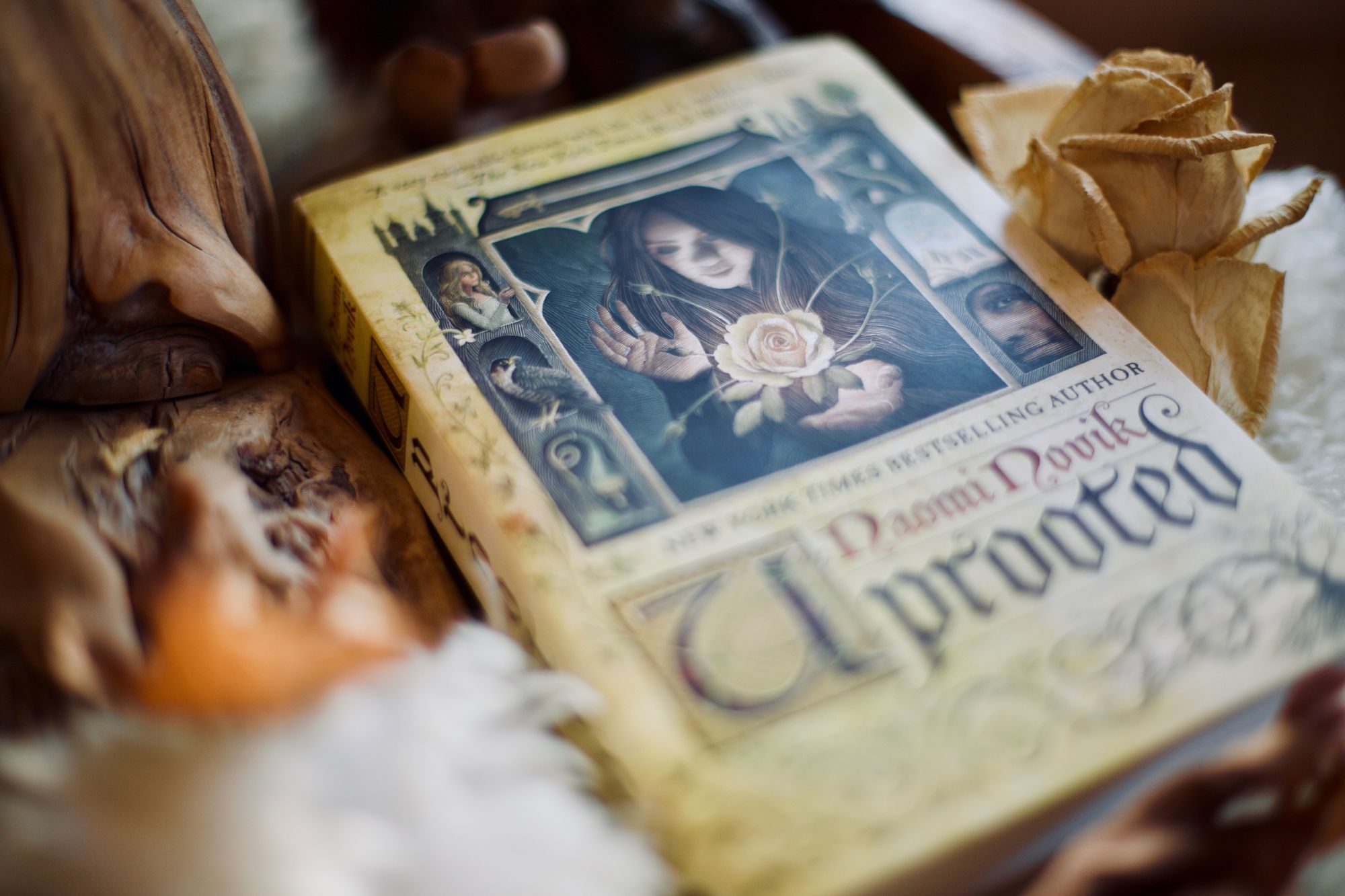 A close-up photo of Uprooted, a book by Naomi Novik. Next to it is a dried rose.
